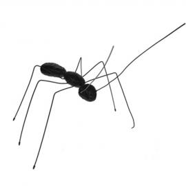 Figurine - Ant
