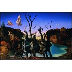 """Affiche - """"Cygnes se reflétant en éléphants """""""